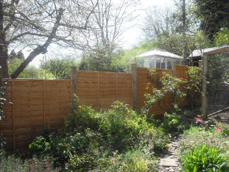 The new fence panels are up